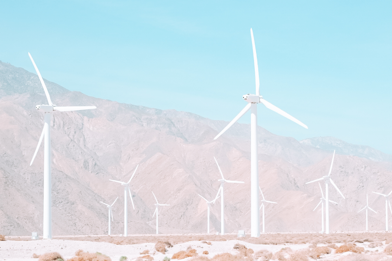 Instagrammable windmills in Palm Springs