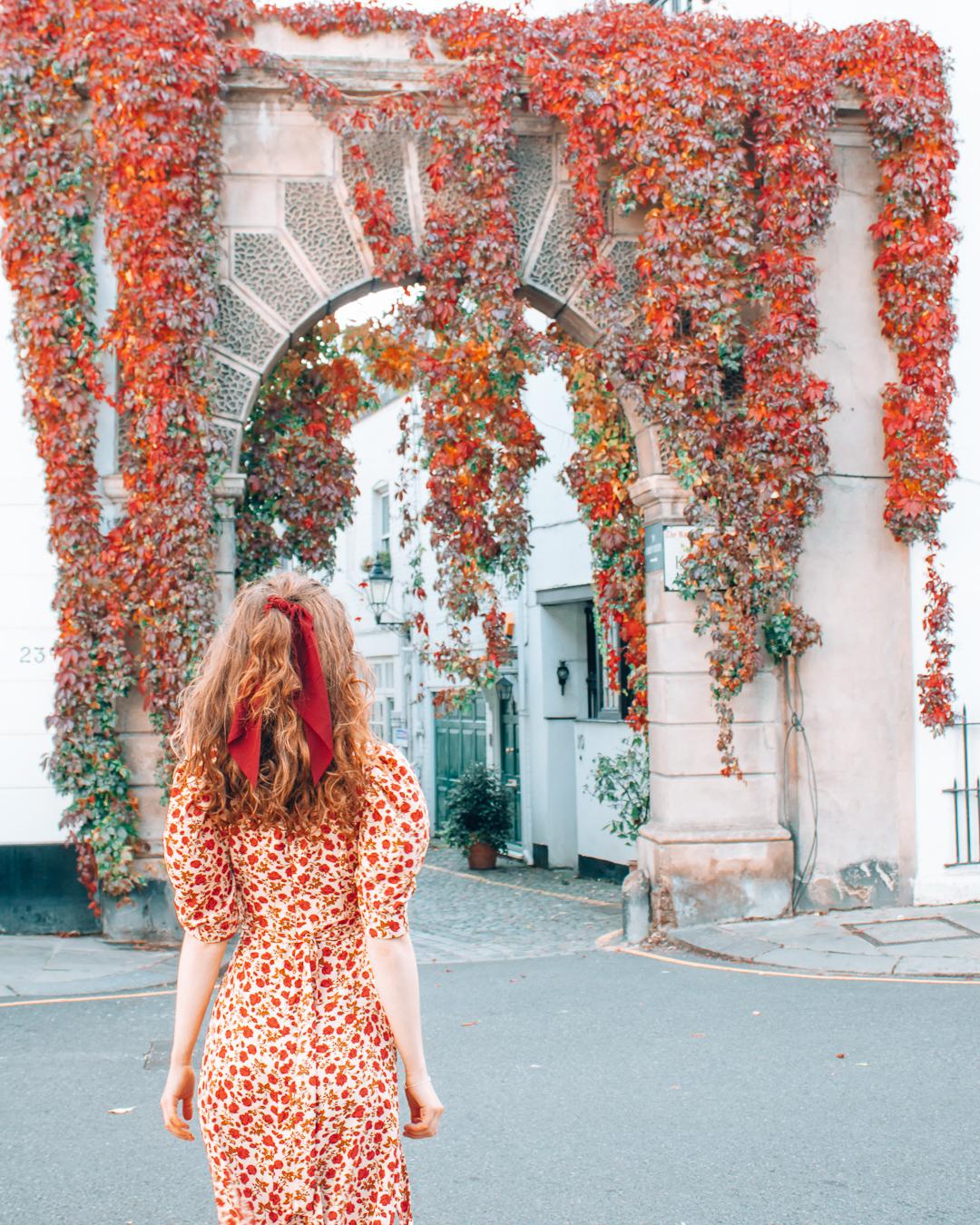 Red leaves at Kynance Mews