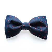 Venton Crimson - Blue/red dotted bow tie