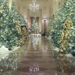 Melania Trump Highlights Spirit Of America For Holiday