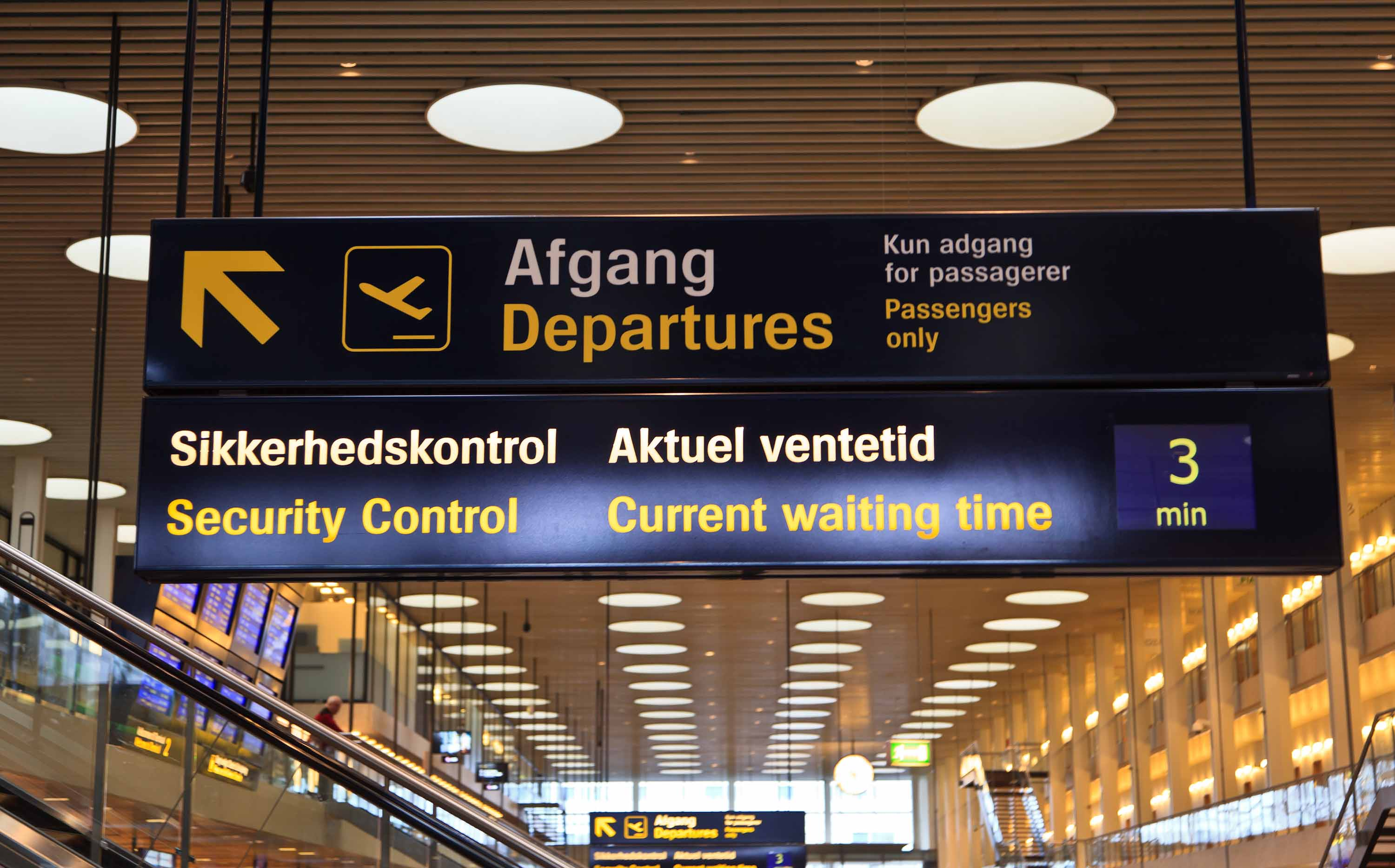 Copenhagen airport partially closed after woman presented flu symptoms