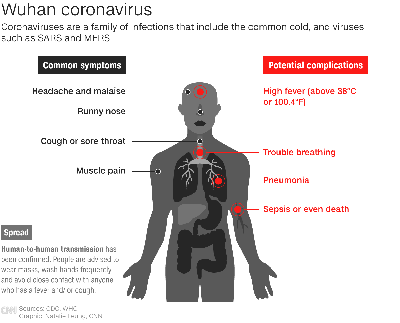 How the Wuhan coronavirus affects the body