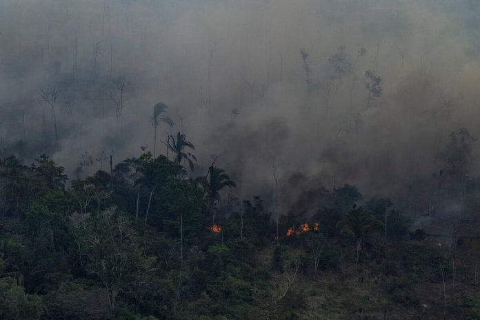 An aerial image released by the NGOs Amazon Watch, Greenpeace Brazil and the Brazilian Climate Observatory from a campaign in the Amazonas states.