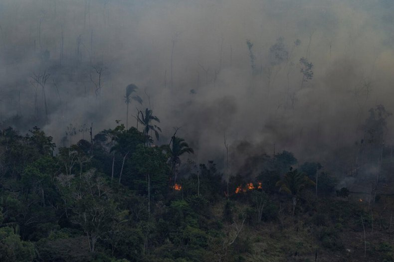 An aerial image released by NGOs Amazon Watch, Greenpeace Brazil, and the Brazilian Climate Observatory from an expedition in the Amazonas states.