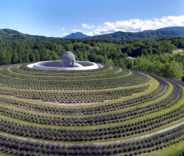 Tadao Andos Hill Of The Buddha At The Makomanai Takino Cemetery In Sapporo Northern Japan