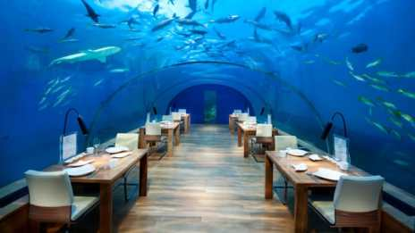 Conrad-Maldives_Ithaa-Undersea-Restaurant-High