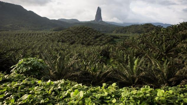 São Tomé and Principe are a biodiversity hotspot.