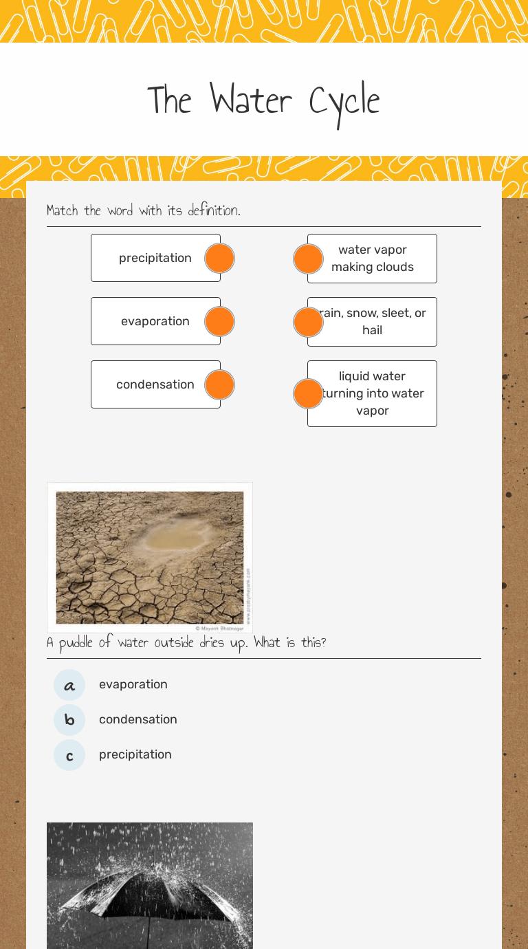 The Water Cycle   Interactive Worksheet by Teresa Keesling   Wizer.me [ 1380 x 768 Pixel ]