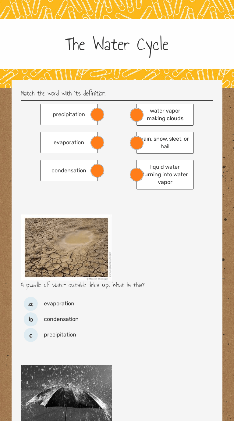 hight resolution of The Water Cycle   Interactive Worksheet by Teresa Keesling   Wizer.me