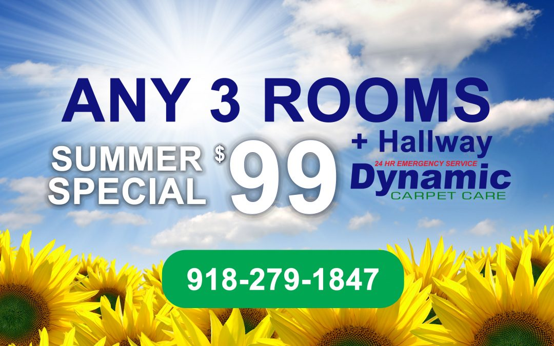 Summer Carpet Cleaning Special