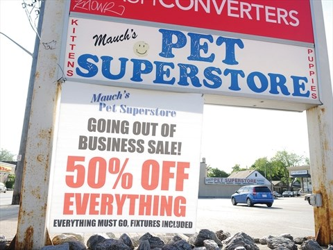 Proposed Oshawa puppy sale ban forcing him out of business ...