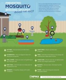 Prevent Mosquito Breeding