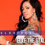 Elke the Stallion @ElketheStallion: Enter The Stallion - Jose Guerra
