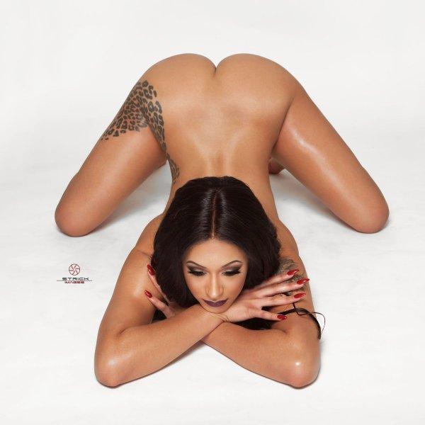 Slim Exotica x Strick Images