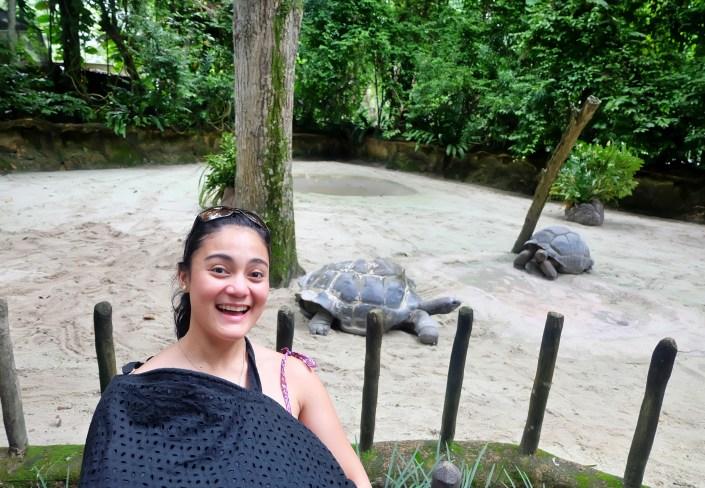 breastfeeding in zoo