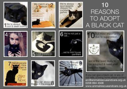 10 grunner sorte
