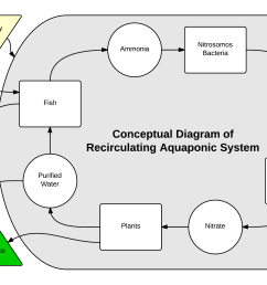 aquaponics system diagram [ 2261 x 1388 Pixel ]