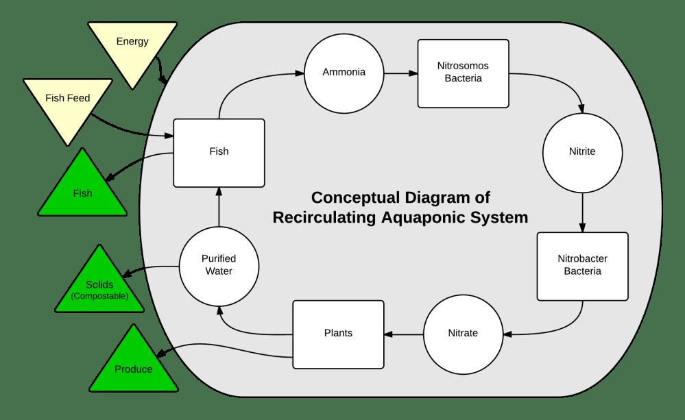 medium resolution of aquaponics system diagram