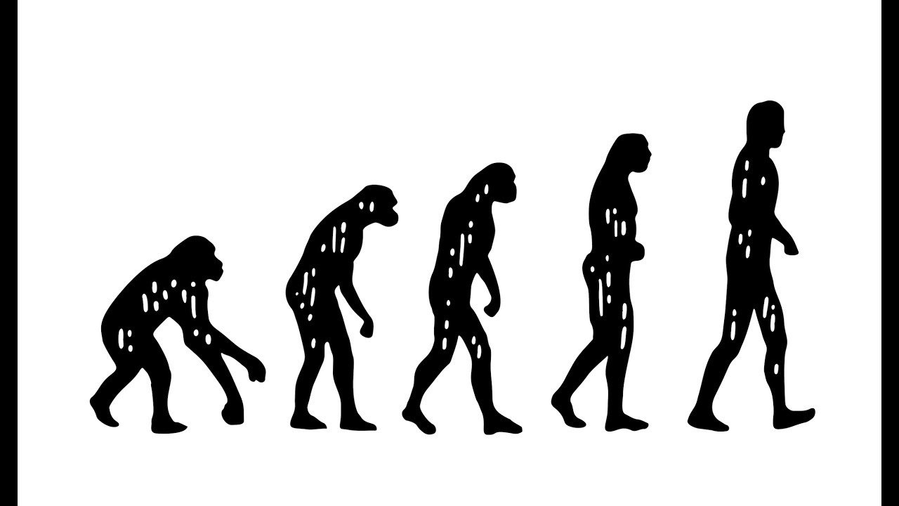 Darwin's 'Ape To Man' Theory: Much Discussed But Less