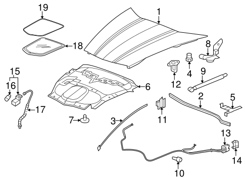 OEM Hood & Components for 2008 Chevrolet Corvette