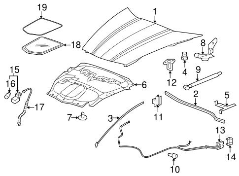 OEM 2005 Chevrolet Corvette Hood & Components Parts