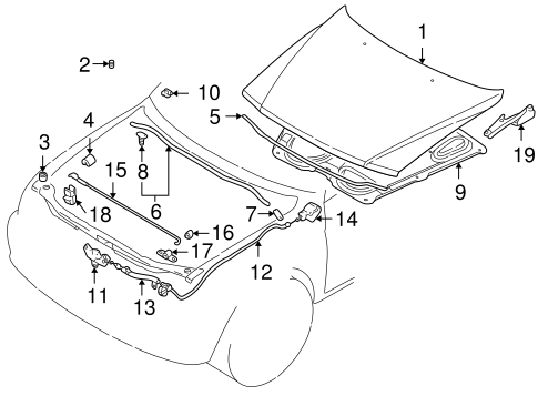 Hood & Components for 1998 Mitsubishi Montero Sport