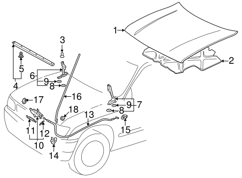 Genuine OEM Hood & Components Parts for 1995 Toyota Tacoma