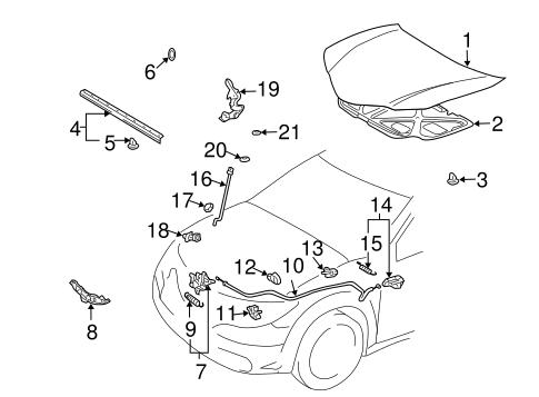 OEM 2007 Pontiac Vibe Hood & Components Parts
