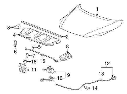 OEM HOOD & COMPONENTS for 2006 Chevrolet Uplander