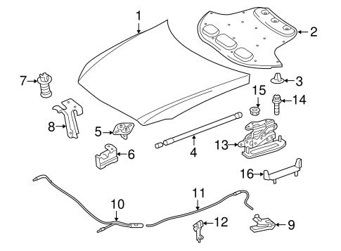 Hood & Components for 2010 Mercedes-Benz E 63 AMG