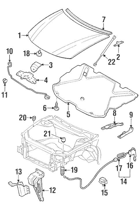 Hood & Components for 1999 Pontiac Grand Prix