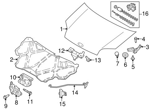 HOOD & COMPONENTS for 2012 Ford Transit Connect