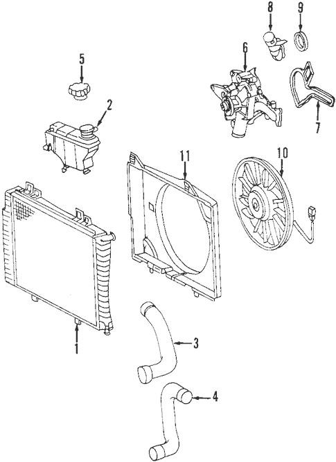 Radiator & Components for 1999 Mercedes-Benz CLK430