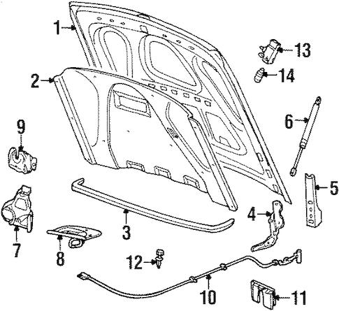 Hood & Components for 2001 Lincoln Town Car