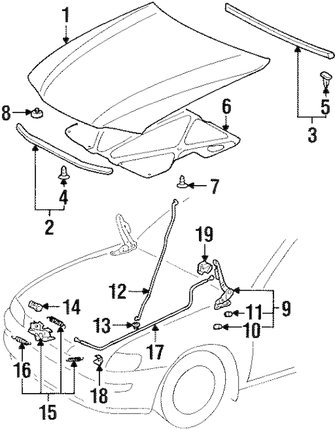 OEM HOOD & COMPONENTS for 1998 Chevrolet Prizm