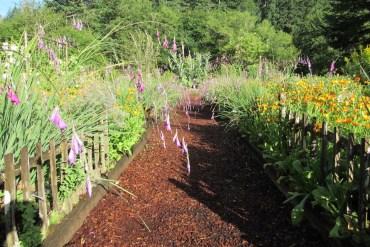 the thyme garden herb company, alsea, oregon