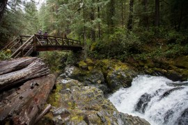 opal creek wilderness