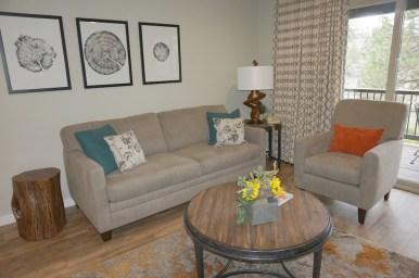 Ski-House-Condo-Living-Room