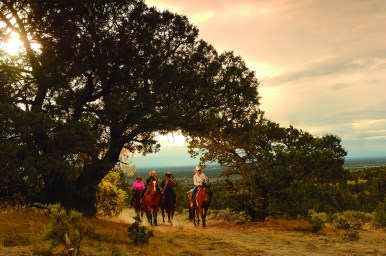 Equestrian-Trail-Riding-For-All-Ages_EDIT1