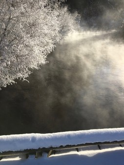 HoM-Early-Morning-Mist-on-the-Metolius