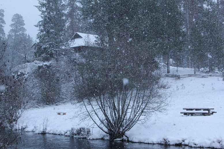 HoM-Eleanors-Cabin-in-a-Snow-Storm