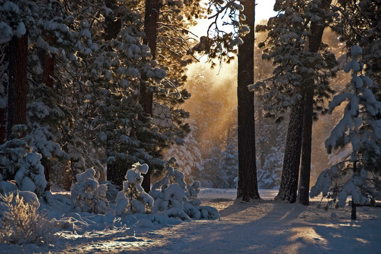 Black-Butte-Ranch_R-View-Winter-Morning-SnowMist-KateThomasKeown-KTK-_DSC0558-copy
