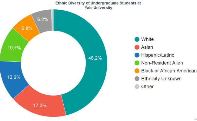 Yale University Diversity Racial Demographics Other Stats