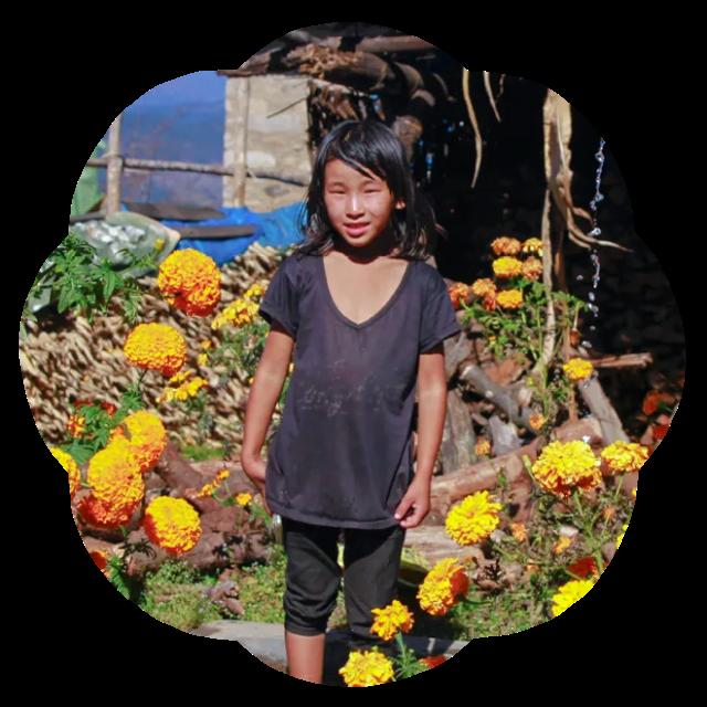 ngim lhamo amid flowers