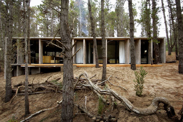 concrete-house_forest-mar-azul_argentina-02