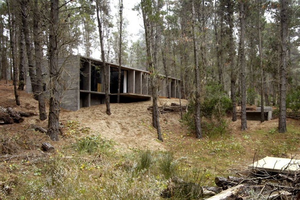 concrete-house_forest-mar-azul_argentina-06