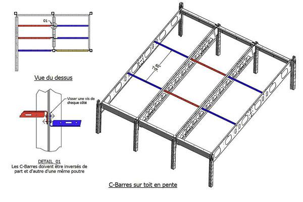 Bone schematic
