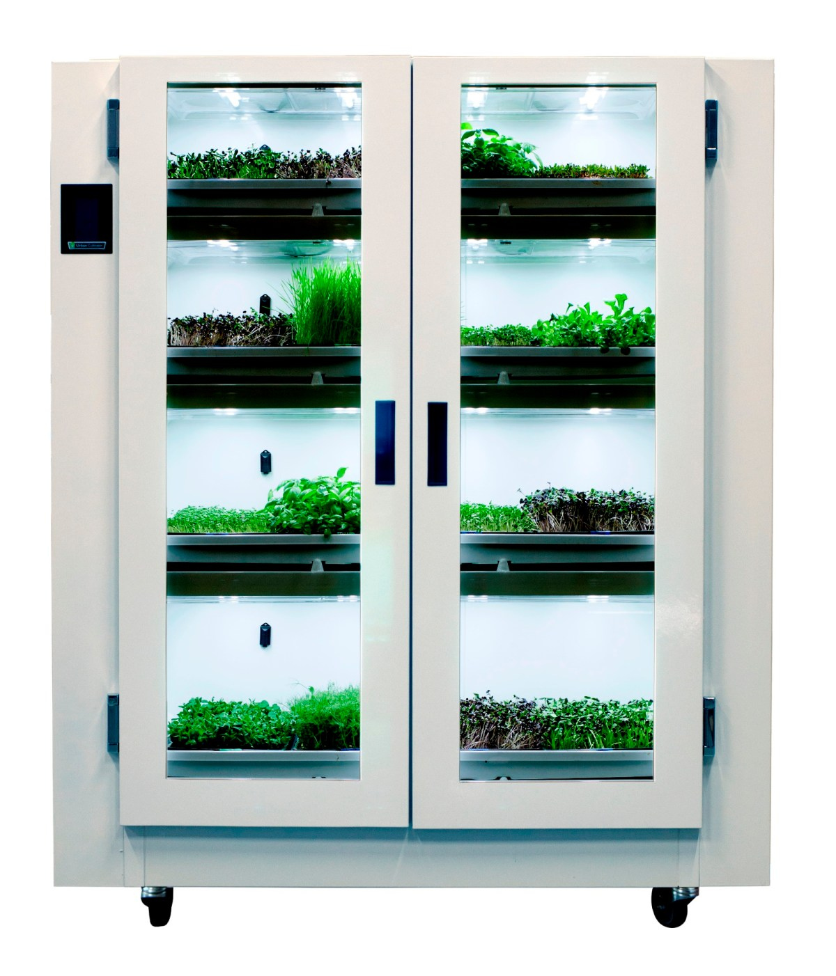 Urban Cultivator for Commercial Situations