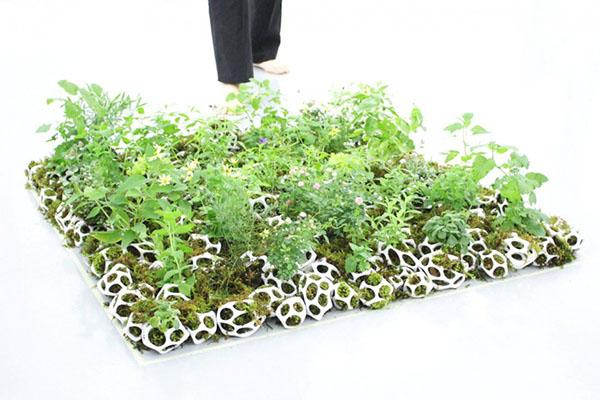 cella-house-plant-holder-03