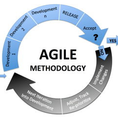 Model In Software Testing V Diagram Dogfish Shark With Labels Agile Methodology The Renewed Face Of